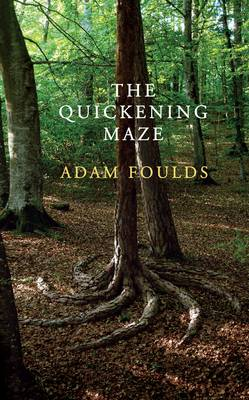 Adam Foulds: The Quickening Maze